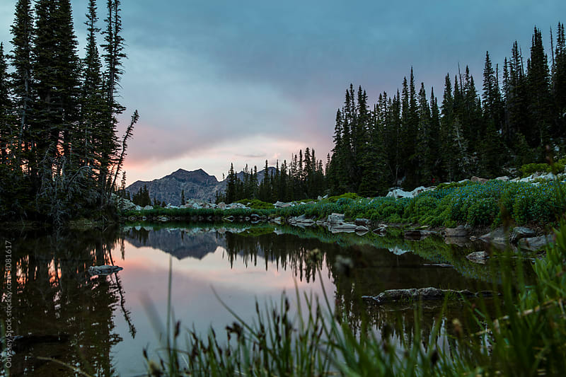 Alpine Pond at Dusk by Odyssey Stock for Stocksy United