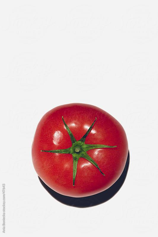 Tomato by Ania Boniecka for Stocksy United
