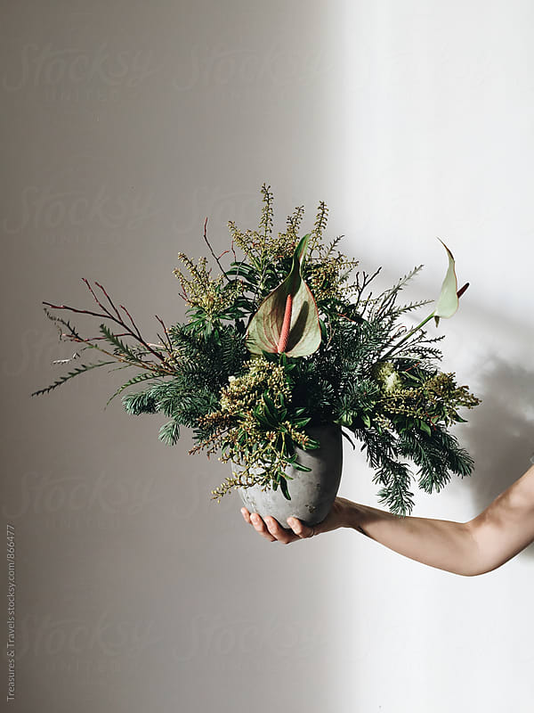 Woman holding a winter boquet by Treasures & Travels for Stocksy United