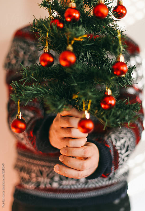 Male hands holding a christmas tree - vertical by Marija Kovac for Stocksy United