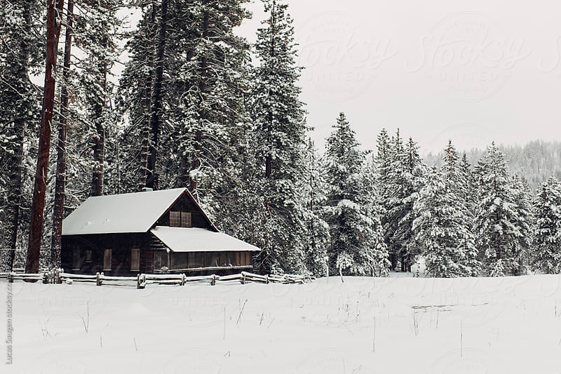A little cottage in the woods in the middle of the winter. by Lucas Saugen for Stocksy United