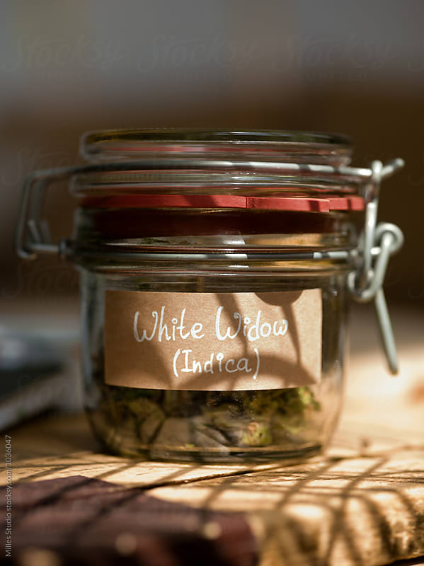 Jar of weed by Milles Studio for Stocksy United