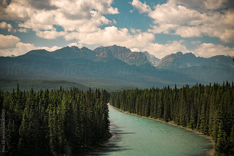 A glacial river curves around a forest of trees with mountains in the background. by Riley Joseph for Stocksy United