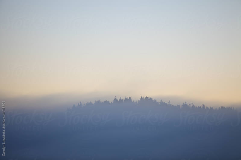 Fog covering the mountaintops at sunrise by Carolyn Lagattuta for Stocksy United