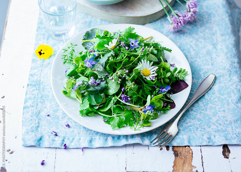 Salad of wild herbs, by J.R. PHOTOGRAPHY for Stocksy United