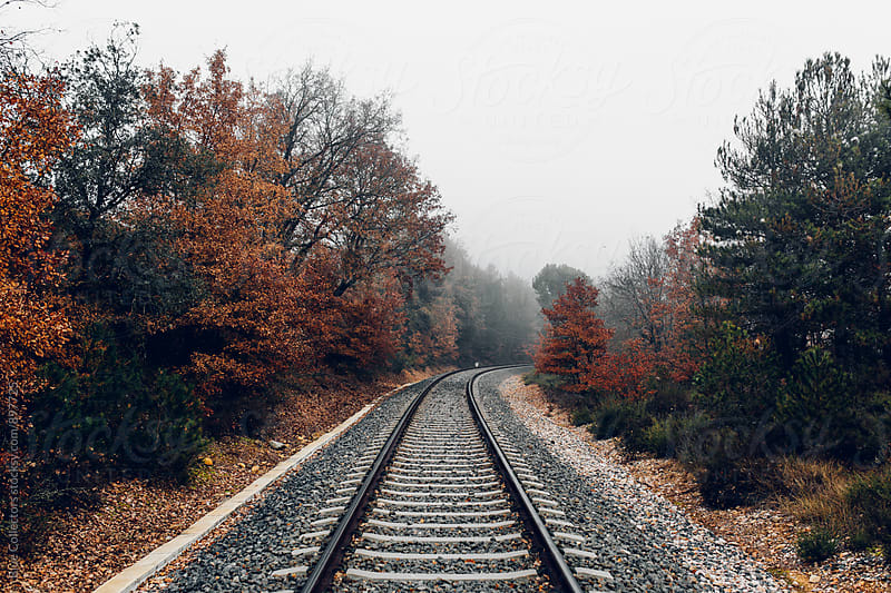 Railway line in autumn by Jordi Rulló for Stocksy United