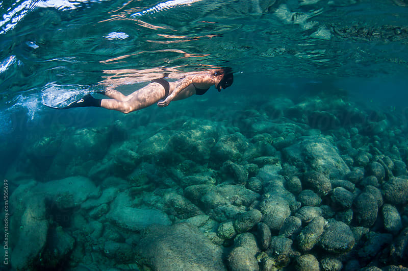 Young Woman snorkels in shallow water by Caine Delacy for Stocksy United