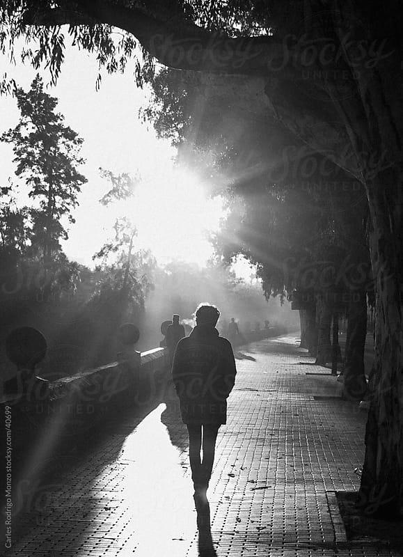 Boy walking in the morning fog. by Carles Rodrigo Monzo for Stocksy United