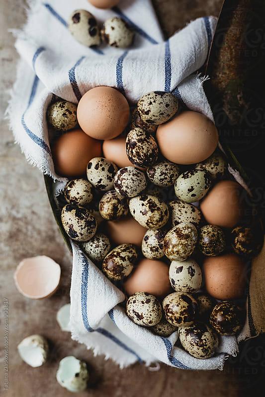 Eggs by Tatjana Zlatkovic for Stocksy United