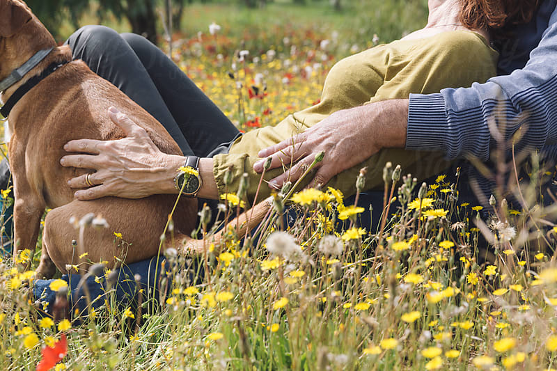 Couple embracing in field of flowers by Lior + Lone for Stocksy United