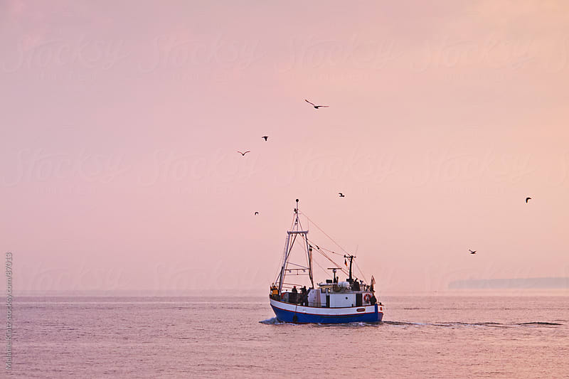 Fishing boat leaving harbor at sunrise by Melanie Kintz for Stocksy United
