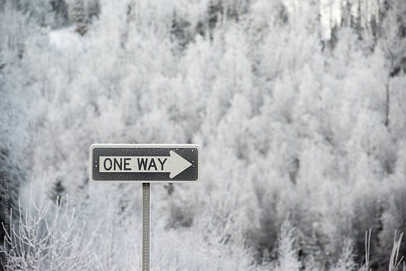 one way sign in winter, frosty by Tara Romasanta for Stocksy United