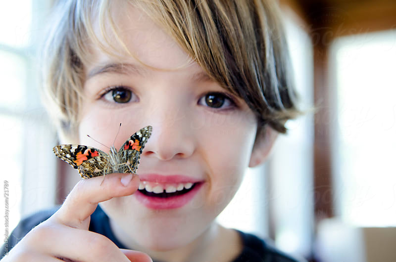 Happy boy holds butterfly on his finger by Cara Dolan for Stocksy United