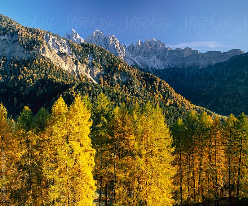 Geisler Gruppe, Geislerspitzen, The Dolomites, Trentino-Alto Adige, Italy by Gavin Hellier for Stocksy United