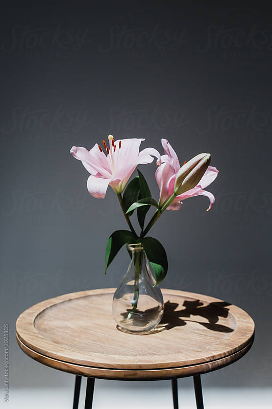 Still life of pale rose Lily in vase by Vera Lair for Stocksy United