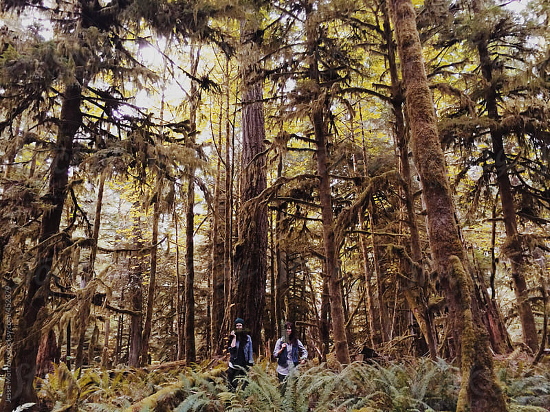 Two young women stand together in woods by Jesse Morrow for Stocksy United
