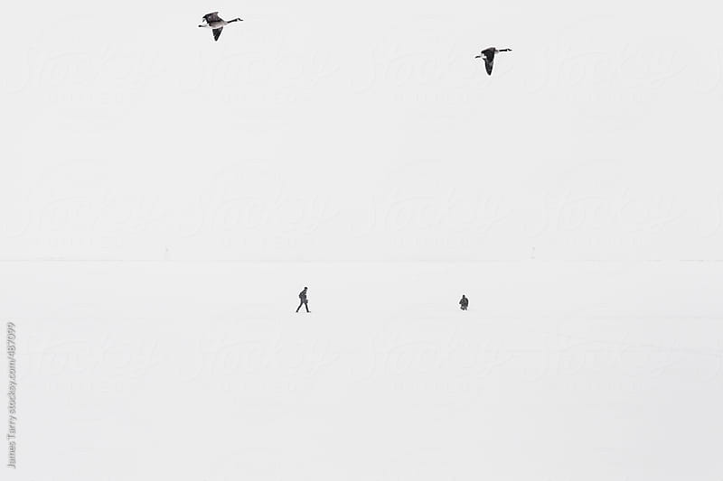 Walkers and fliers on Lake Michigan by James Tarry for Stocksy United