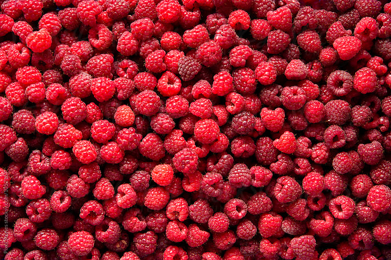 Just picked raspberries background by Pixel Stories for Stocksy United
