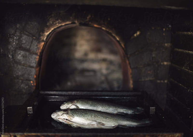 Fish in the oven by Ani Dimi for Stocksy United