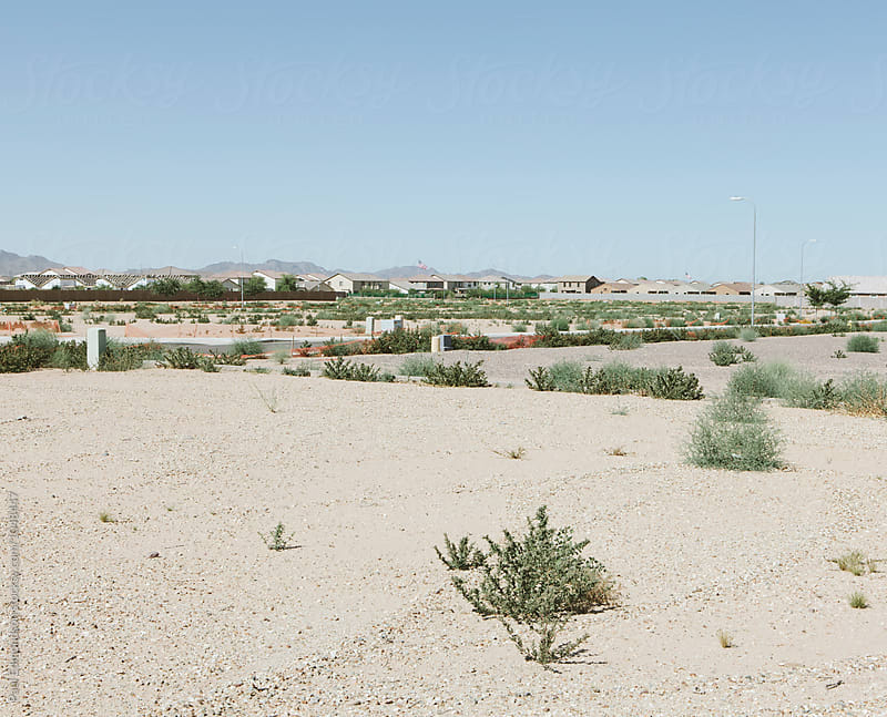 Expansive housing development in desert, near Phoenix by Paul Edmondson for Stocksy United
