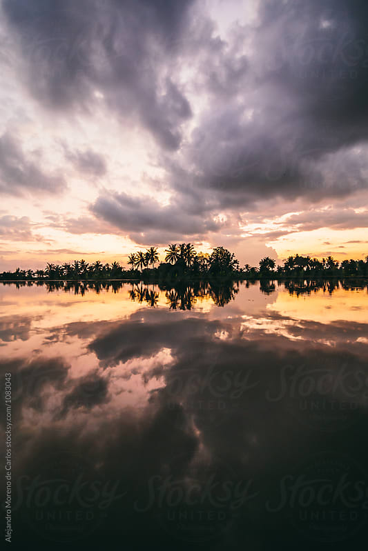 Silhouette of palm trees and reflection on a lake of a cloudy sunset by Alejandro Moreno de Carlos for Stocksy United
