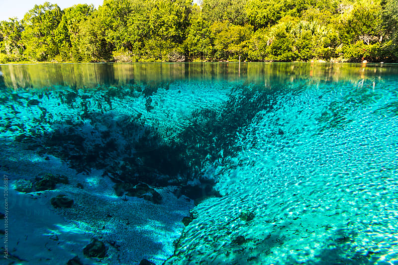 The entrance to a underground fresh water spring in Florida by Adam Nixon for Stocksy United