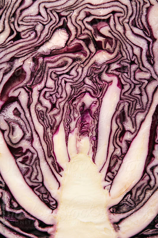 Organic Red Cabbage Closeup by Studio Six for Stocksy United