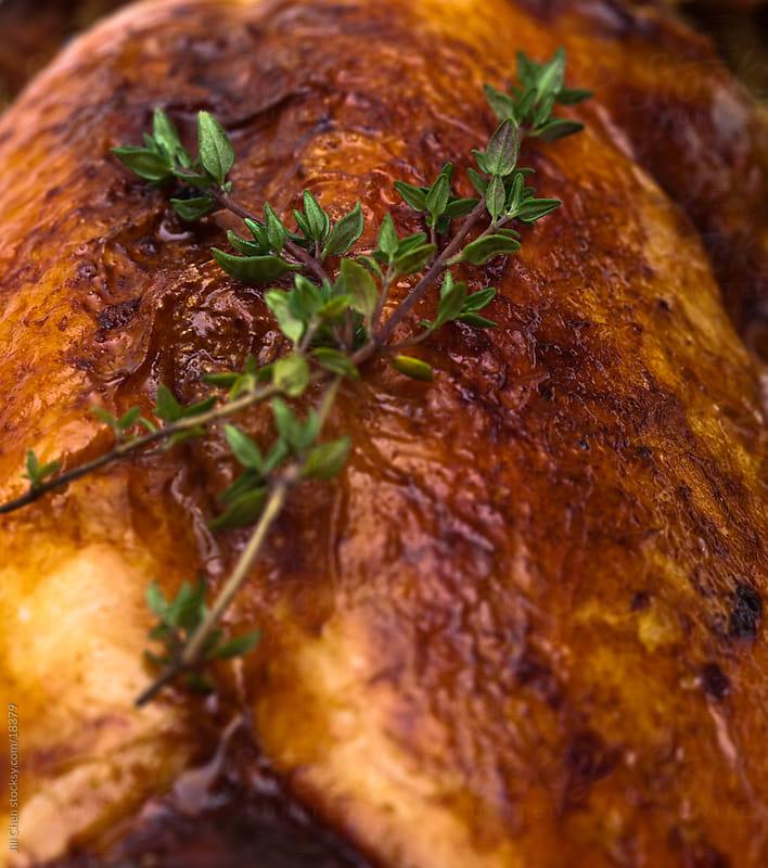 Roast Turkey Background by Jill Chen for Stocksy United