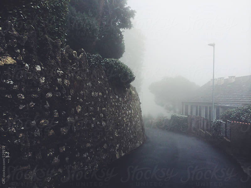 Road in the fog by GIC for Stocksy United