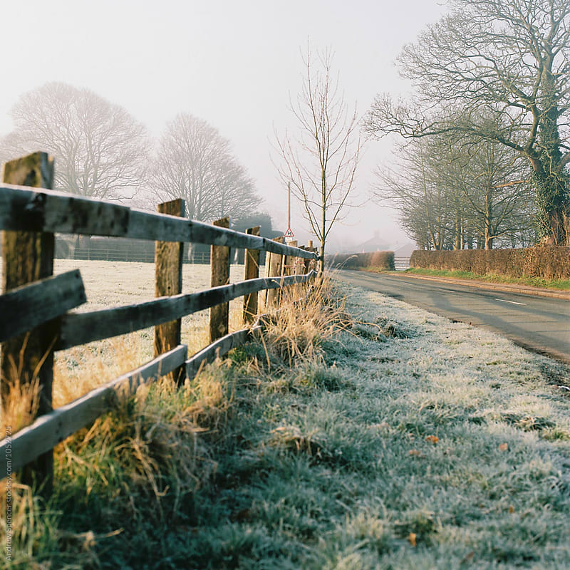 Winter Road by Andrew Spencer for Stocksy United