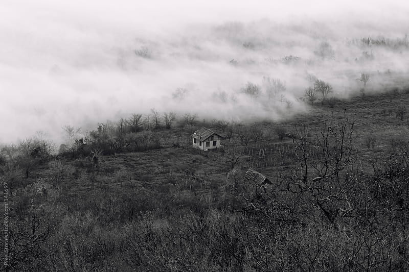 House and fog by Pixel Stories for Stocksy United