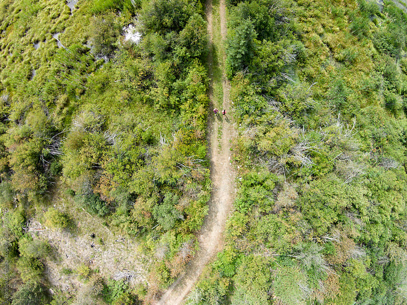 Joggers On Wilderness Trail From Above by Ronnie Comeau for Stocksy United