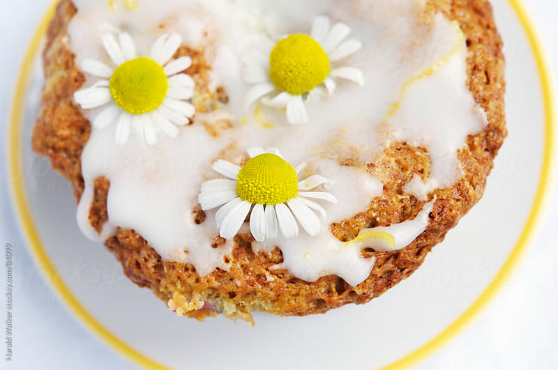 Chamomile Cloud Muffins by Harald Walker for Stocksy United