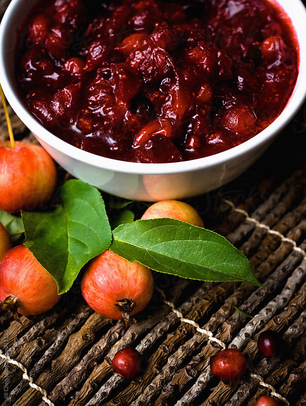 Bowl of Cranberry Sauce by Jill Chen for Stocksy United
