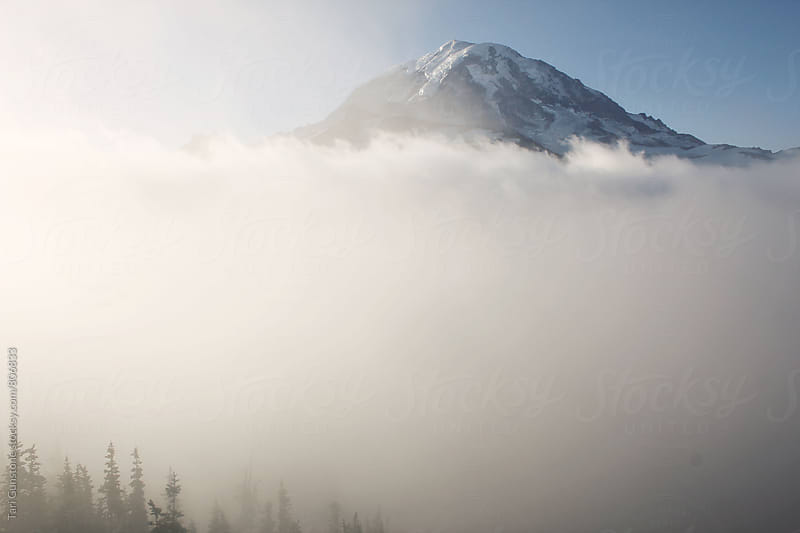 Mountain rises above thick fog by Tari Gunstone for Stocksy United