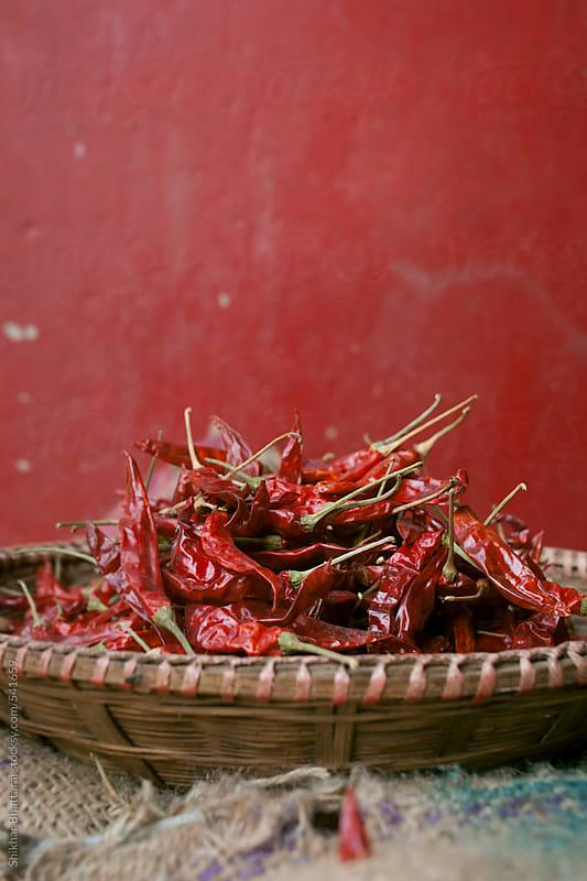 Red hot chili pepper. by Shikhar Bhattarai for Stocksy United