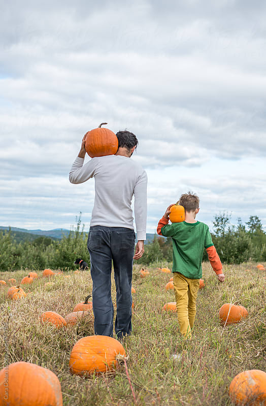 Father and son walk through a pumpkin patch together, carrying their selections on their shoulders by Cara Dolan for Stocksy United