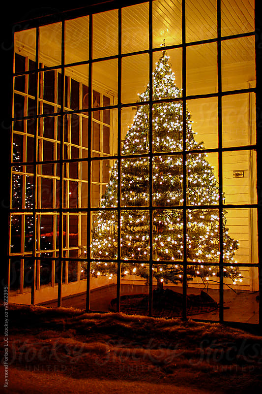 Christmas Tree In Porch Window by Raymond Forbes LLC for Stocksy United