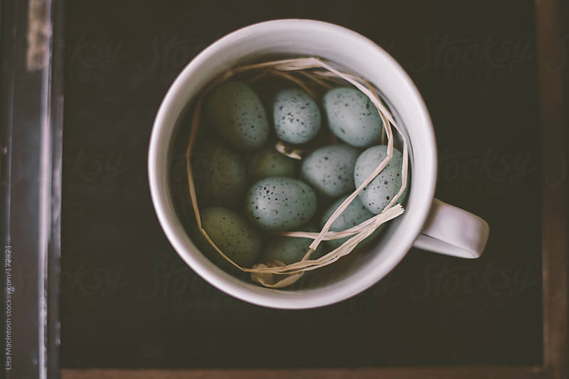 blue robins eggs in white cup by Lisa MacIntosh for Stocksy United