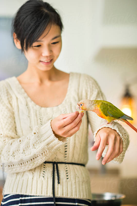 Attractive young Asian woman tenderly feeding a small pet parrot perched on her hand by Lawren Lu for Stocksy United
