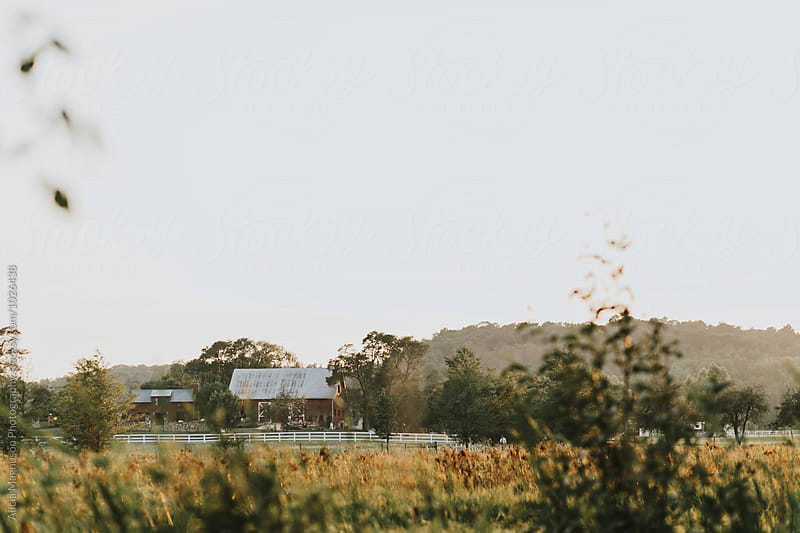 Barn and Field at Sunset by Alicia Magnuson Photography for Stocksy United