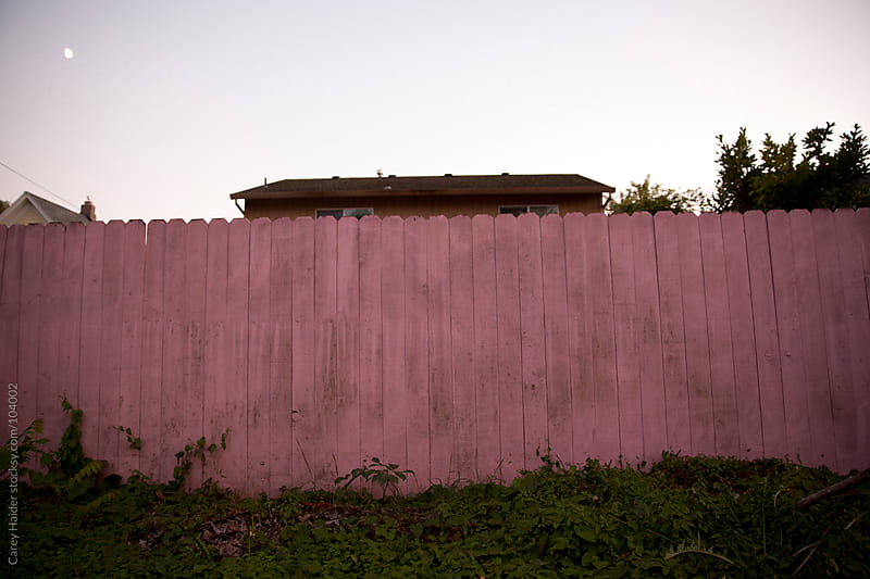 A Pink Fence by Carey Haider for Stocksy United