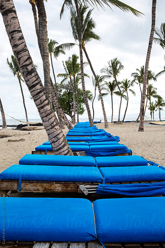 Lounge chairs at the beach with lots of palm trees by Curtis Kim for Stocksy United