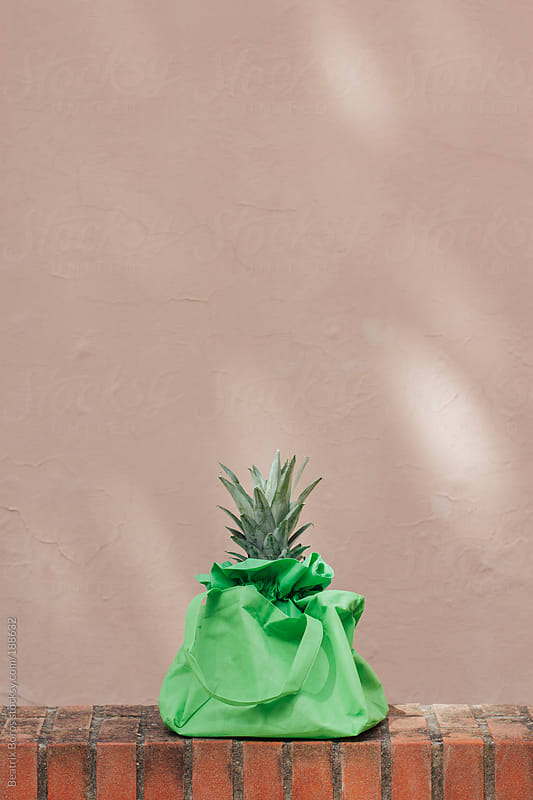 Grean leafs of ananas in a green bag by Beatrix Boros for Stocksy United