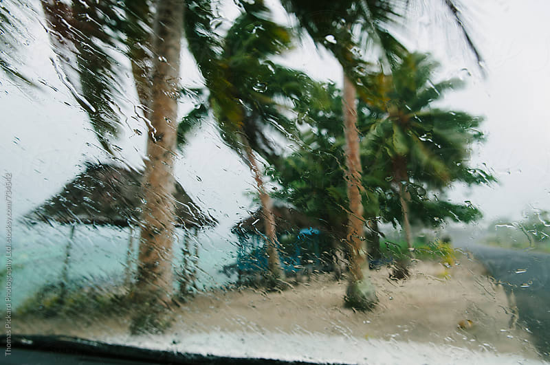 Rain on windscreen, Samoa. by Thomas Pickard for Stocksy United