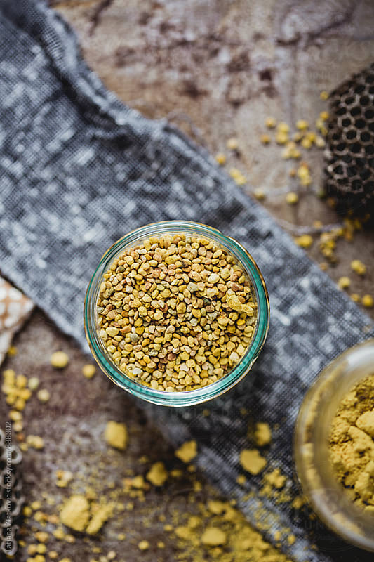 Pollen by Tatjana Zlatkovic for Stocksy United