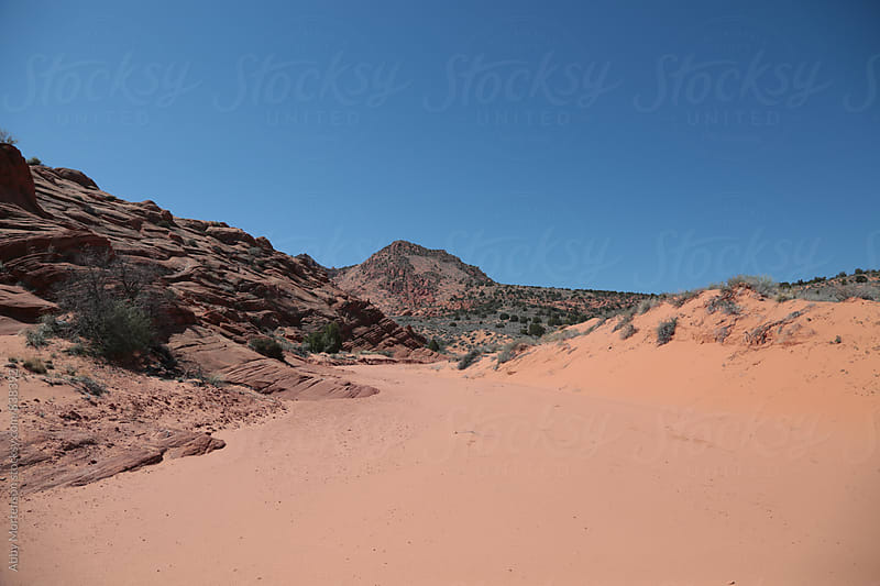 Pink Desert by Abby Mortenson for Stocksy United
