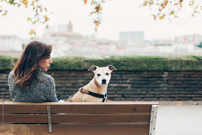 Woman sitting on a bench with her dog by Vera Lair for Stocksy United