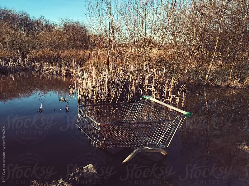 Shopping Trolley Dumped in a Pond by Neil Warburton for Stocksy United