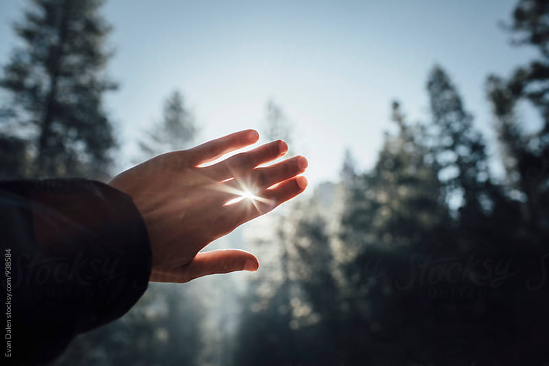 Hand Covering Morning Light Rays by Evan Dalen for Stocksy United